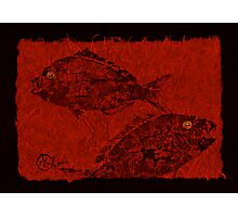 Gyotaku Scup Series 1  Red Unryu Paper Photographic Print
