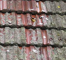 Roof tiles, Jenolan Caves by epicDi