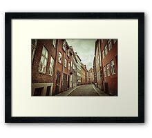 Cobbled Street in Copenhagen Framed Print