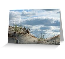 Sand Dune at Lavallette New Jersey  Greeting Card