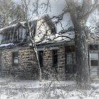 Winter's Lost Homestead by wiscbackroadz