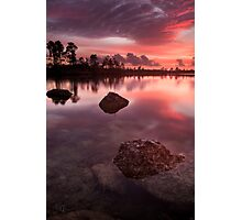 Calm in the Glades Photographic Print