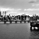 Manhattan as seen from Brooklyn~ by ShellyKay