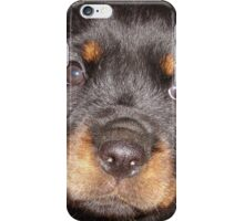 Adorable Rottweiler Puppy Making Eye Contact iPhone Case/Skin