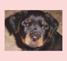 Adorable Rottweiler Puppy Making Eye Contact One Piece - Short Sleeve