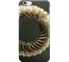 The Circle Is Now COmplete iPhone Case/Skin