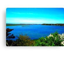 cape cod landscape  Canvas Print