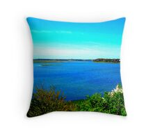 cape cod landscape  Throw Pillow