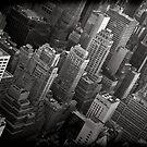 New York Maze by Andrew Wilson
