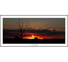 Natures Beauty Photographic Print