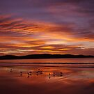 Sunrise over Box Head by Len  Gunther