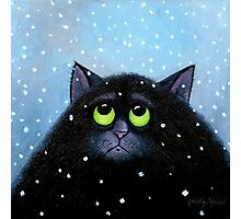 Snow Again Photographic Print
