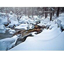The Snow Photographic Print