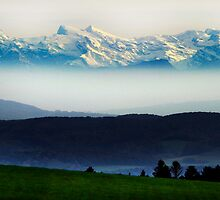 The Swiss Alps by Angelika  Vogel