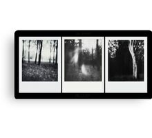 Pinhole - The Wood against The Lights Canvas Print