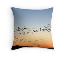 Grey cranes returning to their sleeping quarters at sunset Throw Pillow