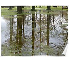 Reflections Of Trees In The Flood Poster
