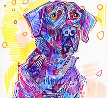 Big black dog drawing by Gwenn Seemel