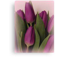 Purple on  pink Canvas Print