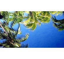 Nature in Blue and Green Photographic Print