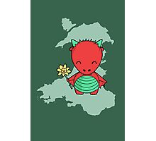 Little Welsh Dragon Photographic Print
