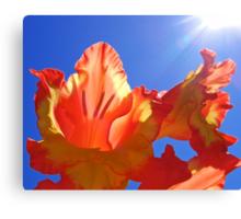 Glorious Sun Canvas Print