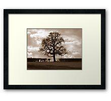 Hedgerow Tree Framed Print