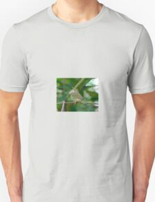 Swainson's Warbler T-Shirt
