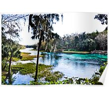 Rainbow Springs State Park Headwaters Poster