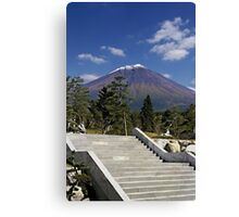 Stairway to Mt. Fuji Canvas Print