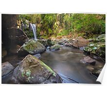 Curtis Falls, Mt Tambourine Poster