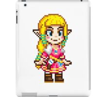 Skyward Sword - Zelda Pixel iPad Case/Skin