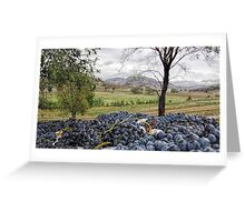 Mudgee Grapes Greeting Card