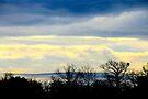 Vinilla Skies by NatureGreeting Cards ©ccwri