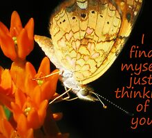 I find myself just thinking of you by Jean Gregory  Evans