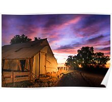 Woolshed at Sunset Poster