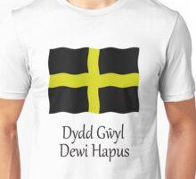 Dydd Gwyl Dewi Hapus - Happy St Davids Day Unisex T-Shirt