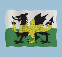 St. David's and Welsh flags combined Kids Clothes