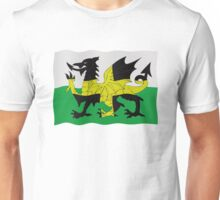 St. David's and Welsh flags combined Unisex T-Shirt