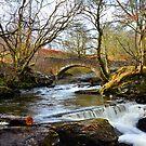 East Side Of Loch Earn,Scotland by Jim Wilson