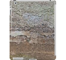 Concrete foundation of an old house iPad Case/Skin