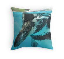 Humboldt Penguin at Welsh Mountain Zoo Throw Pillow
