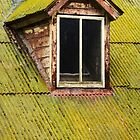 Moss on a Damp Tin Roof by Karen Jayne Yousse
