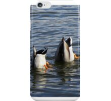 Ducks in the Water  iPhone Case/Skin