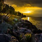 Morning gold II by HappyMelvin