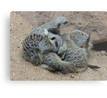 Meerkat Snuggle with Baby Metal Print