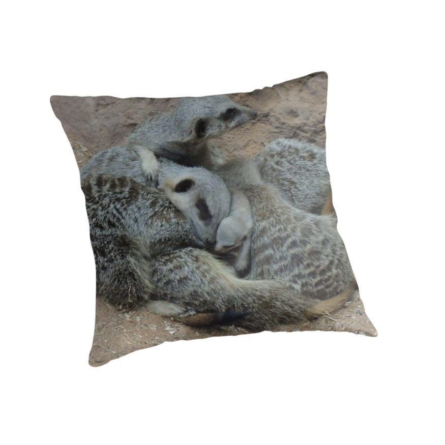Meerkat Snuggle with Baby by CreativeEm