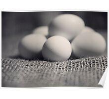 Eggs 2 Poster