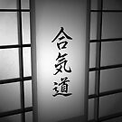 Aikido - Black and White 02 by soniei
