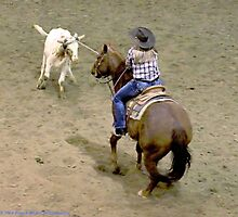 2014 Ranch Hand Rodeo Winnemucca by DonActon